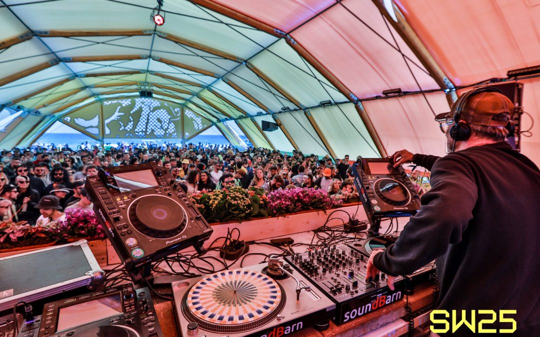 Summer 2020 Electronic Music Festivals that are Still On